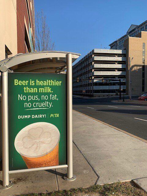 is beer healthier than milk PETA bus stop ads