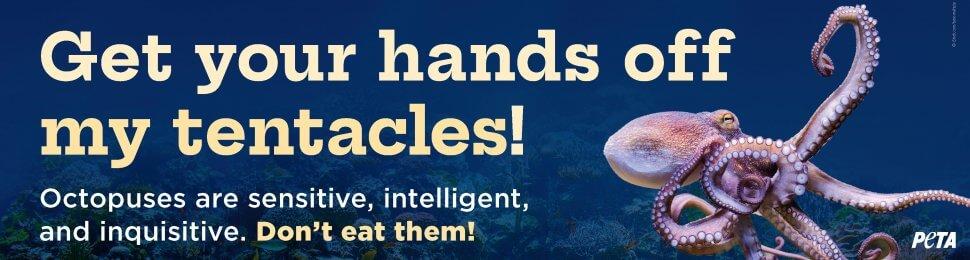Get Your Hands Off My Tentacles!