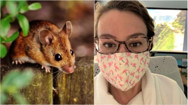 PETA scientists attend SOT annual meeting largest toxicology conference