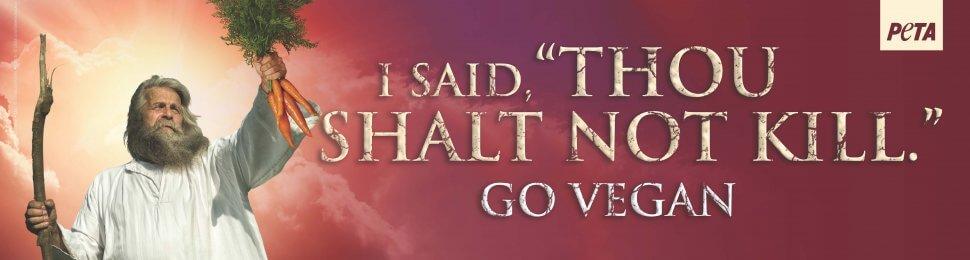 """I Said, """"Thou Shalt Not Kill."""""""