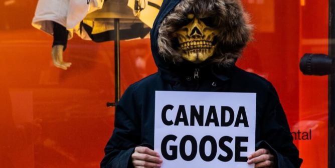 How PETA's Keeping the Pressure on Canada Goose to Ditch Fur, Down