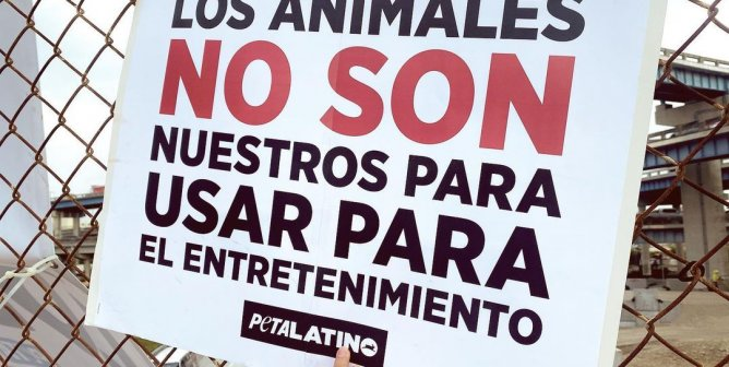 Don't Let Animal Rights Activist Monserrat Zacatelco's Death Be in Vain