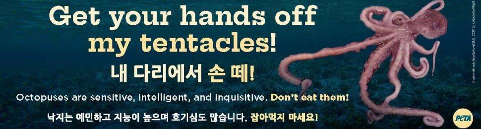Get Your Hands Off My Tentacles (Korean)