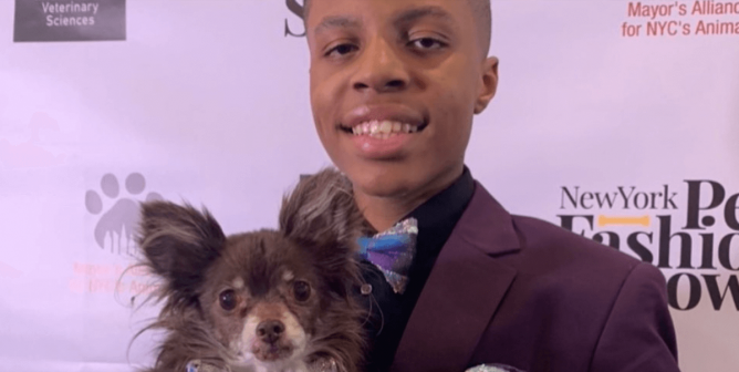 This Young Hero to Animals Helps Dogs Get Adopted by Making Them Bowties