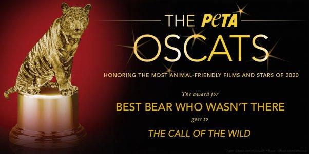 The Call of the Wild movie earns Oscat award from PETA