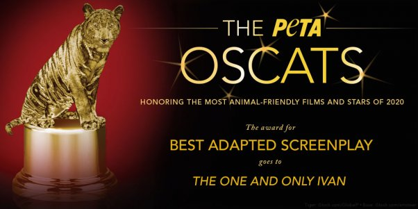 The One and Only Ivan film earns PETA Oscat award