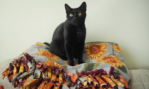 Wendy on sunflower quilt