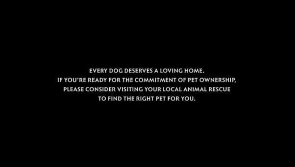 'Cruella': Don't Sleep On the Pro-Adoption End Credits