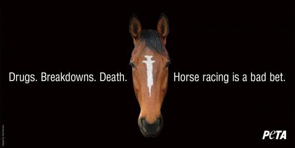 Horse Racing syringe PETA billboard