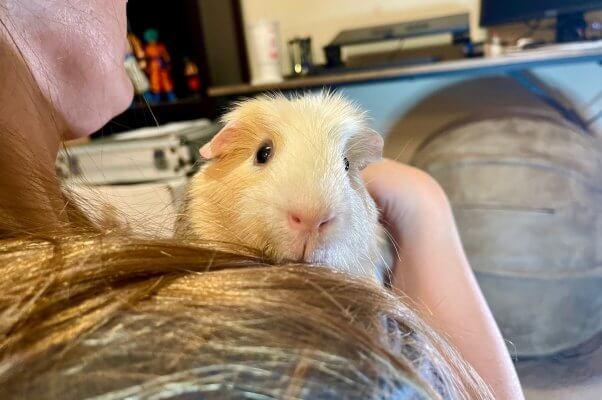Jaxon peeking over his foster mom's shoulder