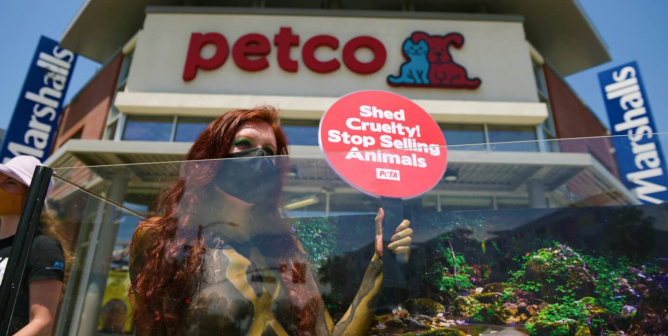 Urge Petco to Stop Selling Birds, Reptiles, Fish, and Others