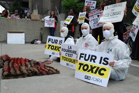Fur's Not Green