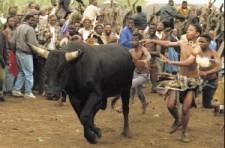 Ukweshwama