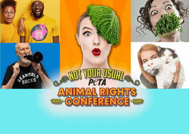 'Not Your Usual Animal Rights Conference': Get Your Ticket to the Event of the Summer!