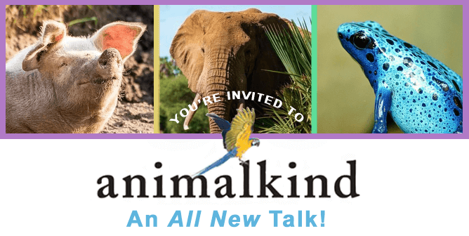You're Invited to 'Animalkind'—an All-New FREE Talk With Ingrid Newkirk