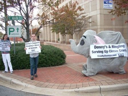Anti-Sean_and_the_elephant.jpg