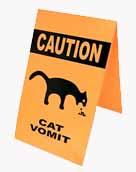 Cat_Vomit.jpg