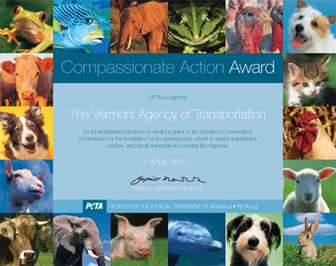 Compassionate Action Award