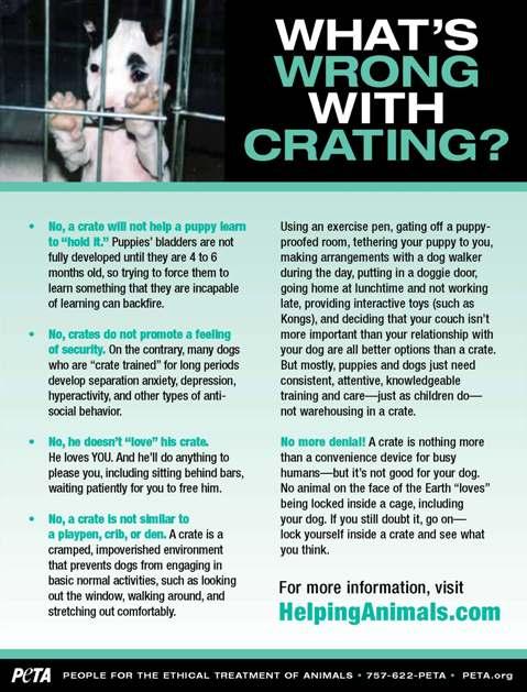 Crating_Leaflet_Page_1.jpg