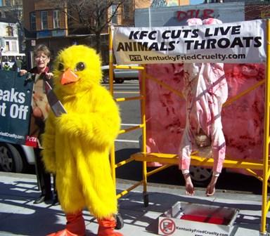 KFC demo 2