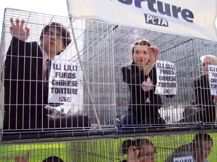 Eli_Lilly_Shareholder_protest_2.jpg