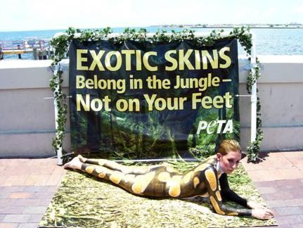 Exotic_Skins_Demo_1.JPG