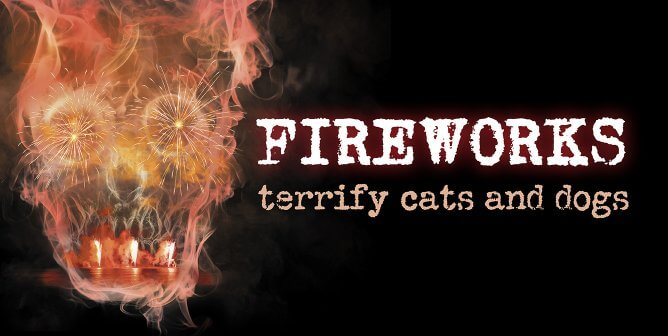 Fireworks Shortage Presents the Perfect Opportunity for Change