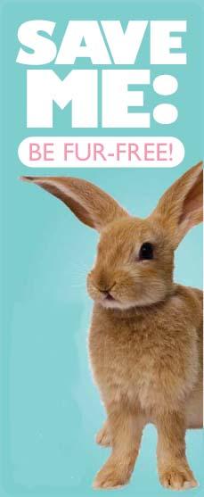 Fur-Free-Bunny.jpg