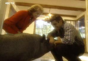 George Clooney and His Pig.jpg