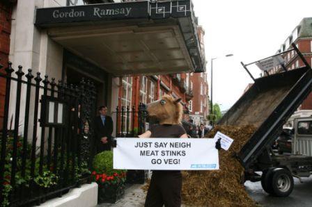 Gordan Ramsay horse manure dump