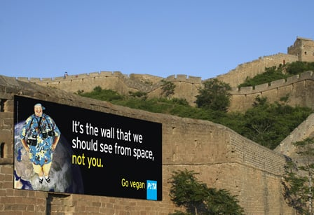Great Wall Banner