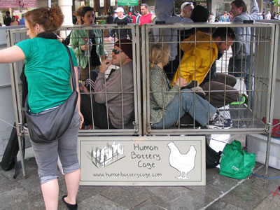 Human_battery_cage.jpg