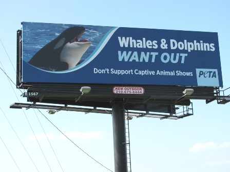 SeaWorld Billboard