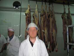 Investigator at Uruguay Slaughterhouse 3.jpg