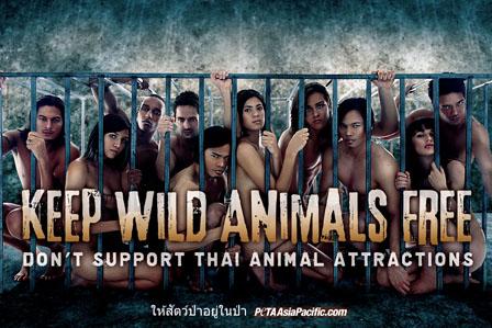 PETA Asia Zoo Ad