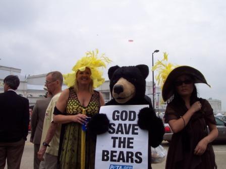 Kentucky_derby_bear.jpg