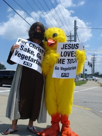 Jesus and the chicken