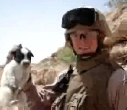 Marine_Puppy_Iraq_Cliff.JPG