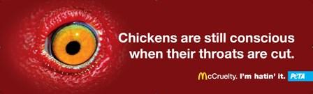 McCruelty Billboard