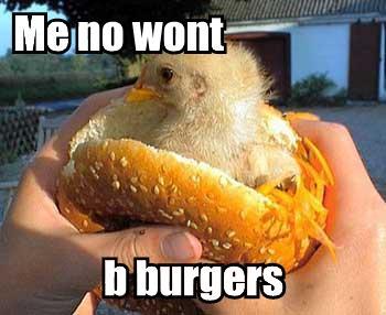 Me_no_wont_b_burgers.jpg