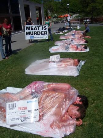 Meat Tray Princeton 098.jpg