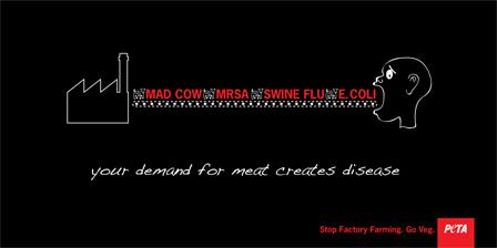 Meat Create Disease