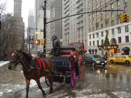 NYC_Freezing_3.jpg