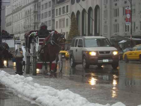 NYC_Freezing_5.jpg