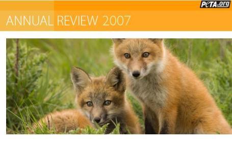 PETA_Annual_Review.JPG