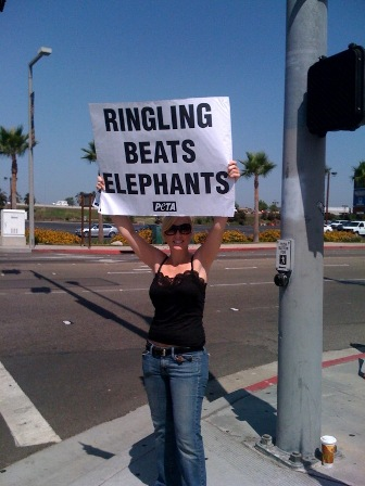 Ringling Bros Demo