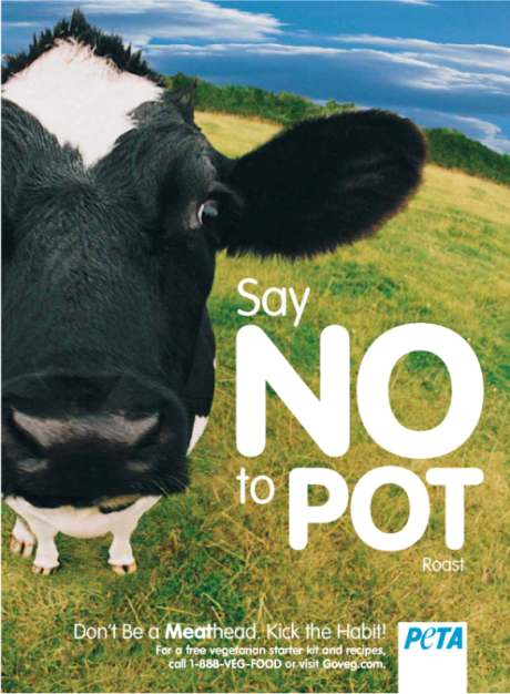Say_no_to_pot_roast.jpg