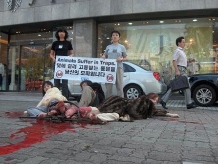 PETA Asia-Pacific Fur Demo