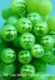 Sour Grapes.jpg