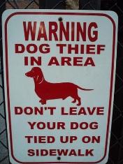 Stolen Dogs